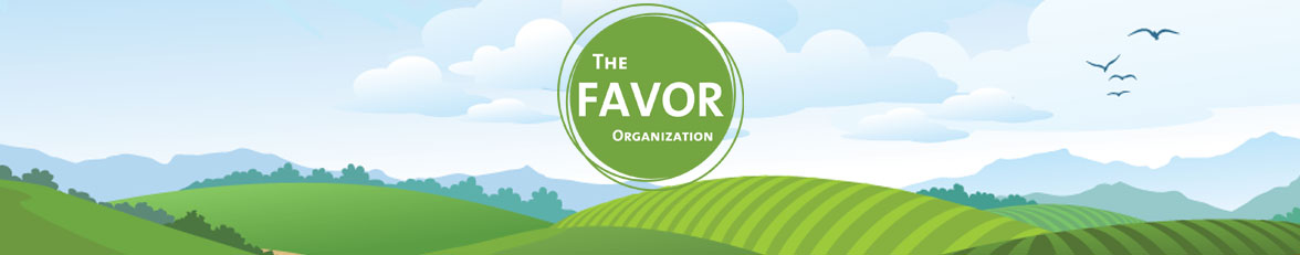The Favor Organization